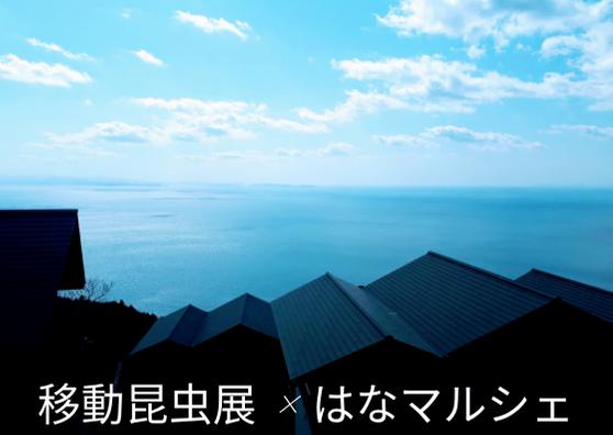 【7/20・21開催】伊方町瀬戸アグリトピアで開催される「移動昆虫展」&「はなマルシェ」についてご紹介します!