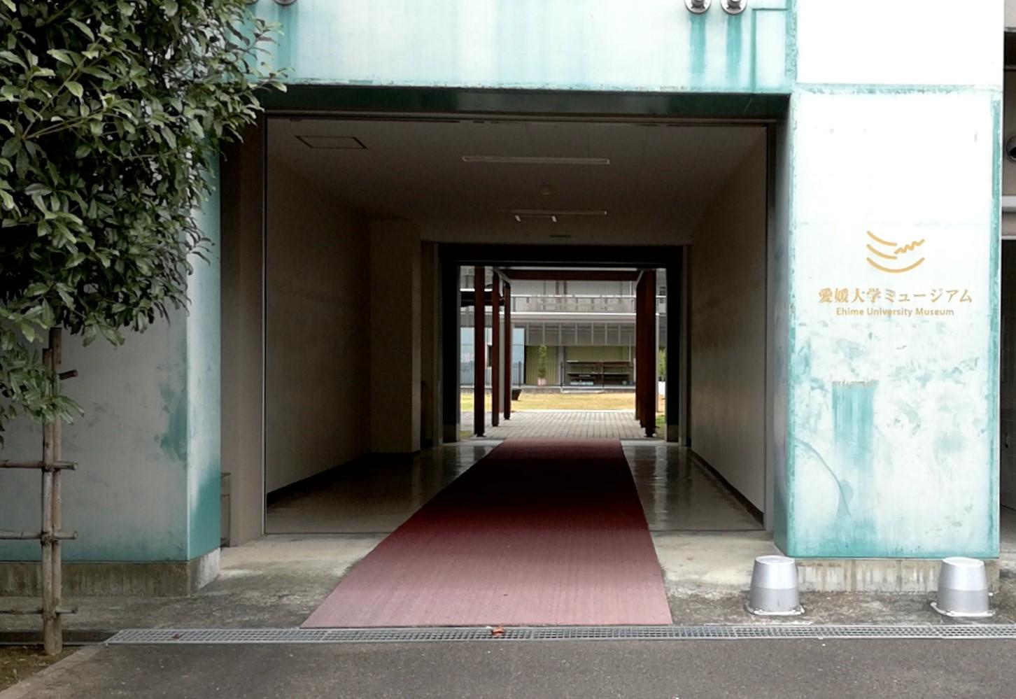 愛媛大学ミュージアムで愛媛の学問の世界を覗く!科学、生物から歴史、文化まで