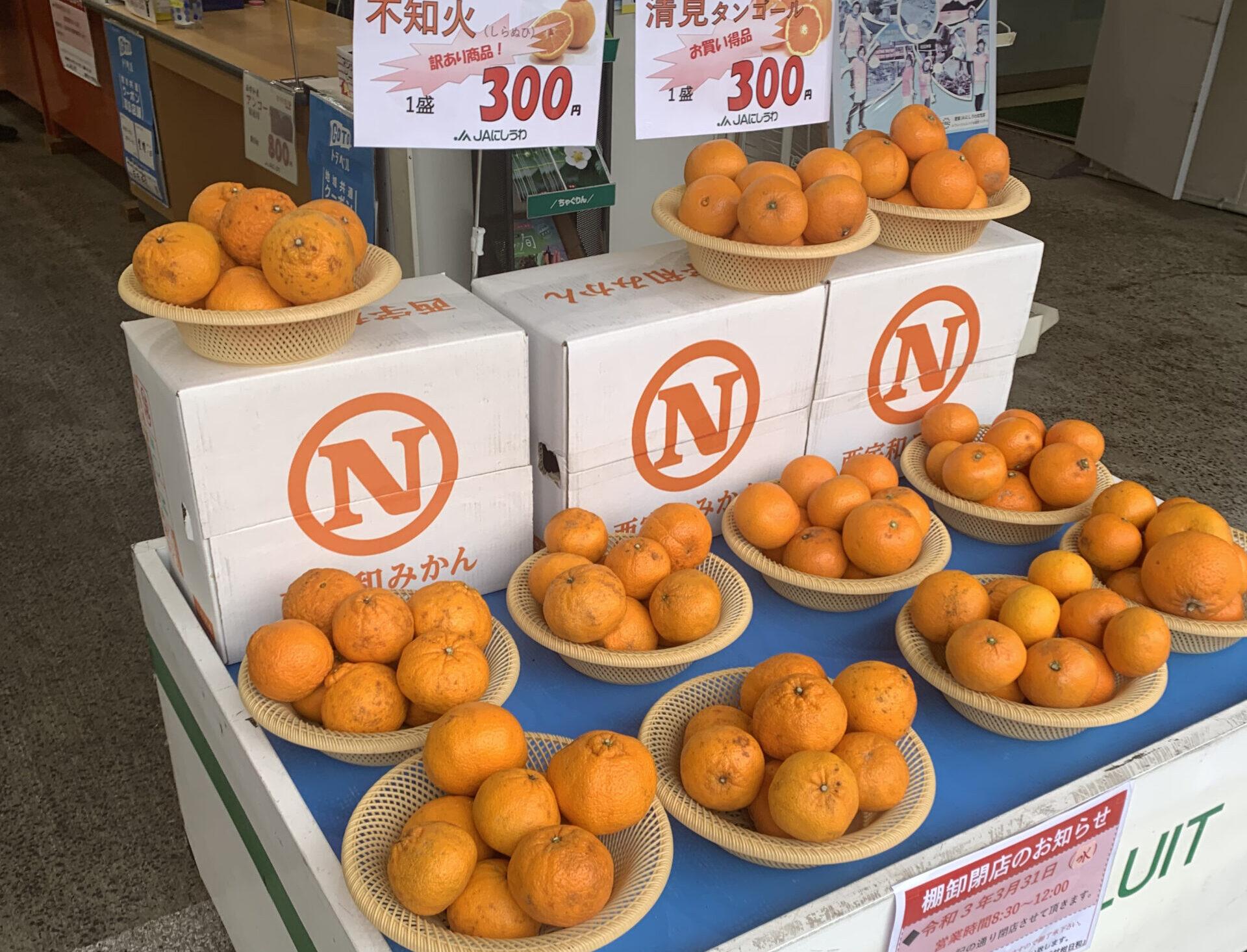 種類が豊富!愛媛・八幡浜でみかんを買うなら「甘柑日和」(かんかんびより)!